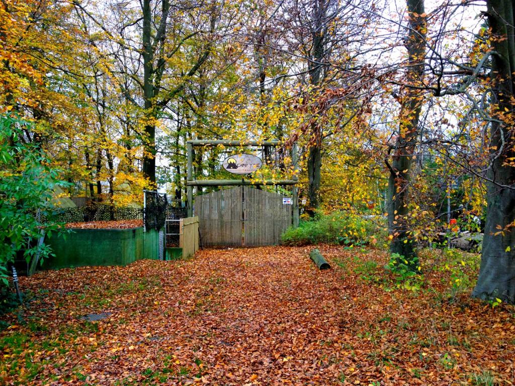 Ystad autumn colors <3